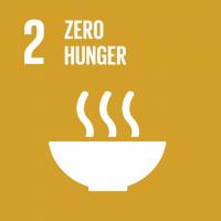 E_SDG goals_icons-individual-rgb-02